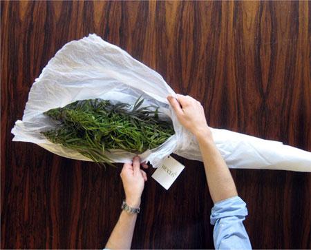 weeds_image_2